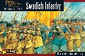 Thirty Years War Swedish Regiment (44)